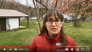 video thumbnail: Irene Jones from Campground program discusses COVID-19 toolkit and efforts from Marshall & Sterling
